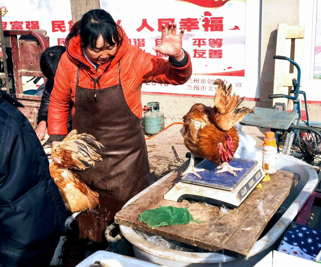 Live chickens being sold