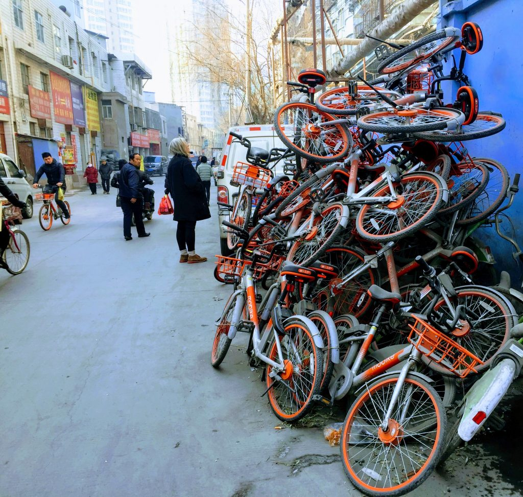 Bicycle graveyard